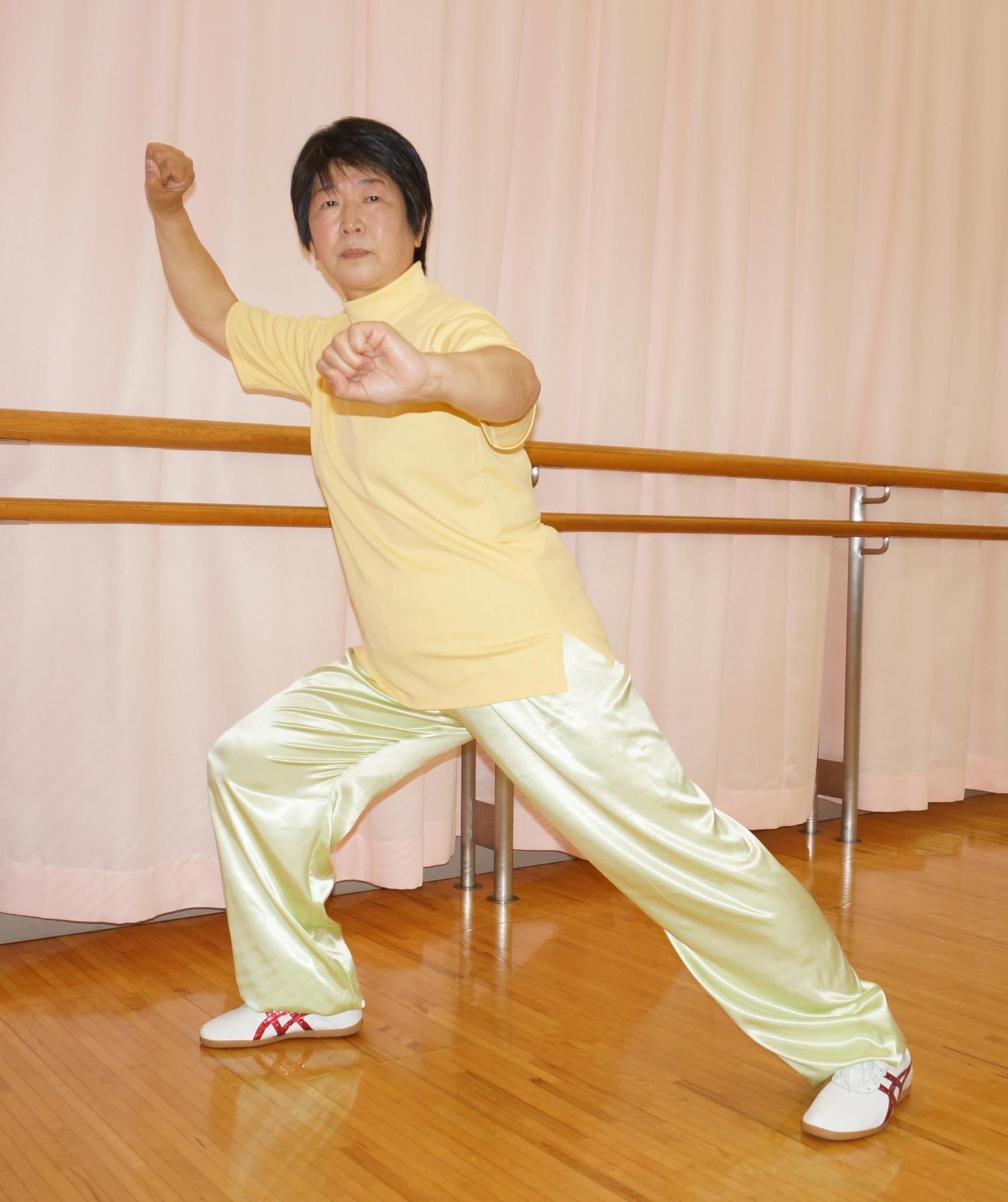 太極 日本 拳 連盟 武術